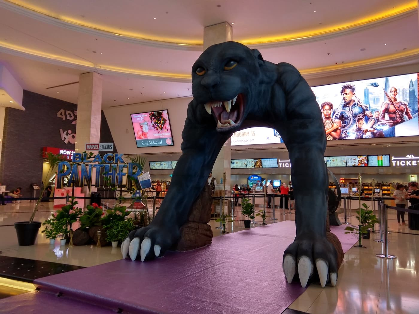panther-mall-activation
